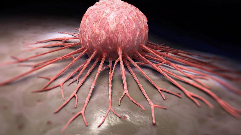 زگیل تناسلی و ویروس HPV